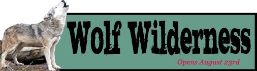 wolf-wilderness.jpg