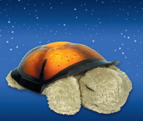 twilight-turtle.jpg