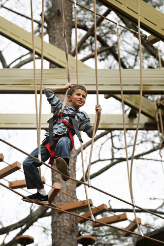 Southern Mamas Blog Archive Safari Ropes Challenge Course Open