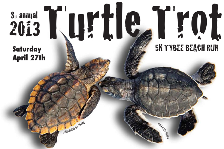 Tybee Sea Turtle Release &amp; Turtle Trot 