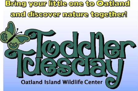 Toddler Tuesdays at Oatland Island Wildlife Center