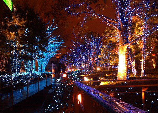 Southern Mamas Blog Archive December Nights Holiday Lights Coastal Georgia Botanical