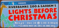 Lights Before Christmas Riverbanks Zoo Columbia S.C.