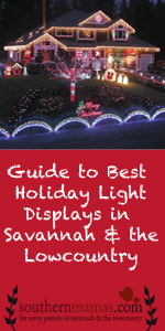 Best home holiday lights Christmas decorations in Savannah