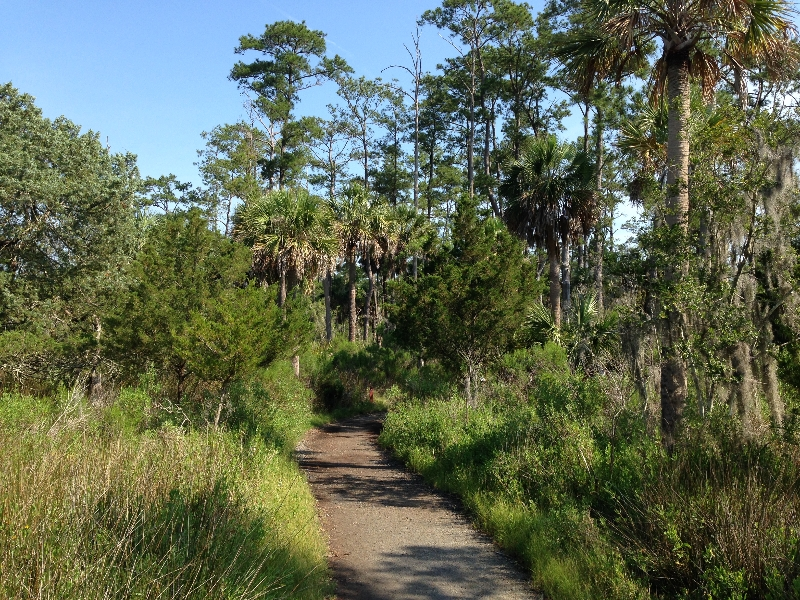 Skidaway Is State Park hiking trails