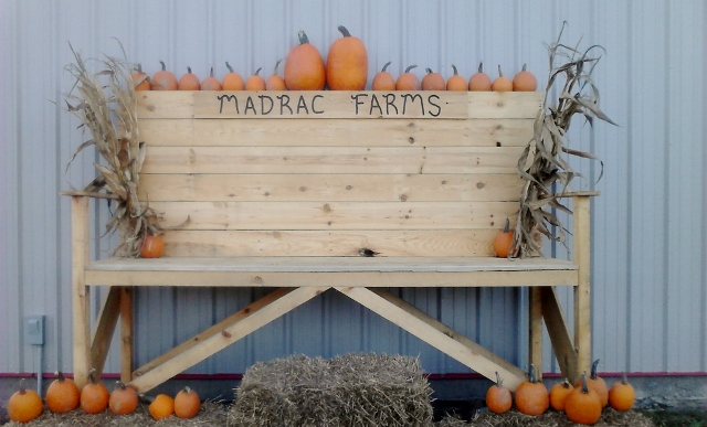 Pumpkin Patches Corn Mazes near Savannah