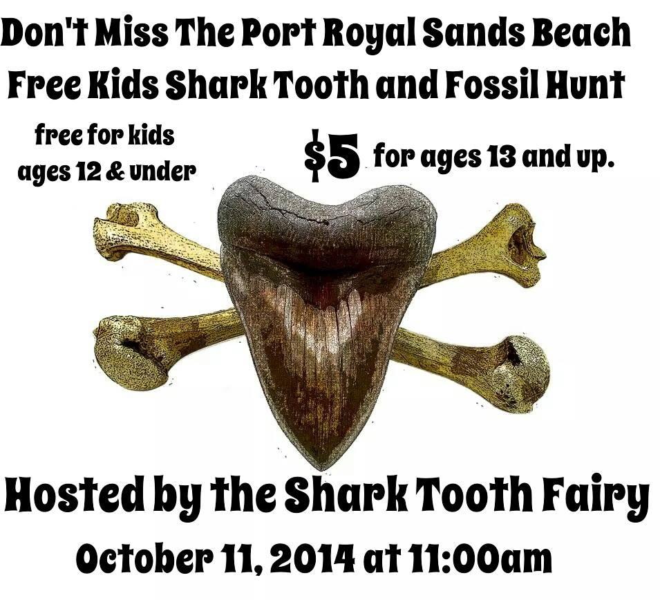 FREE shark tooth hunt Oct. 11 Port Royal Beaufort
