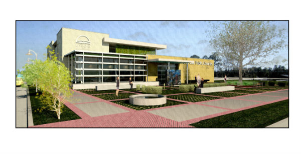 New Islands and Garden City Live Oak Public Libraries