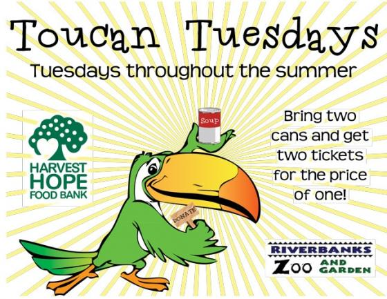 Toucan Tuesday free ticket Riverbanks Zoo