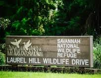 free preschooler program at Savannah National Wildlife Refuge