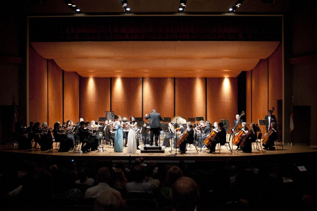Armstrong Youth Orchestra Auditions 2015-16 Savannah