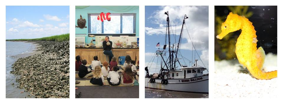 Free Skidaway Marine Sciences Day Savannah 2015