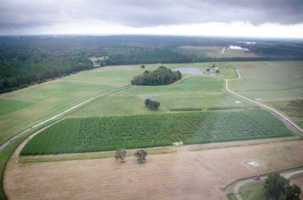 Southern Mamas 187 Blog Archive 187 Ottawa Farms Corn Maze