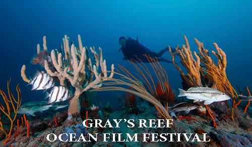 Gray's Reef Ocean Film Festival Children's Session Savannah
