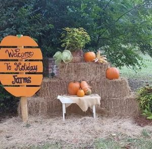 Holiday Farms pumpkin patch Ridgeland hayrides pig races