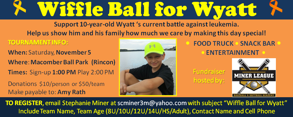 Wiffle Ball for Wyatt Savannah boy leukemia