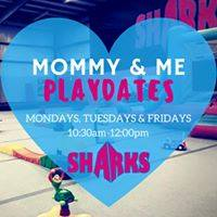 Things do in Savannah with preschoolers toddlers Mommy Me Savannah Sharks