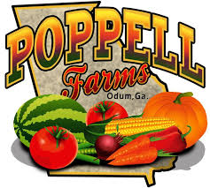 pumpkin patch maze farms Poppell Farms Savannah