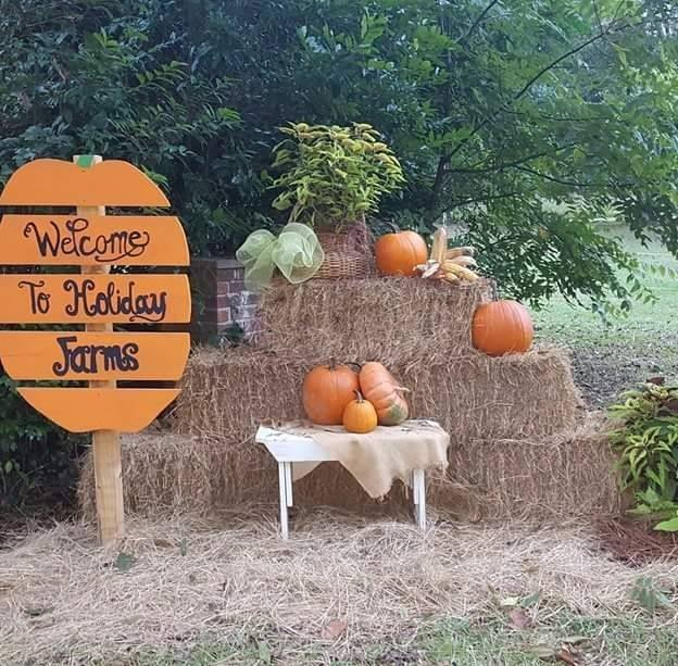 pumpkin patches Savannah Bluffton Hilton Head 2017 Hayrides maze