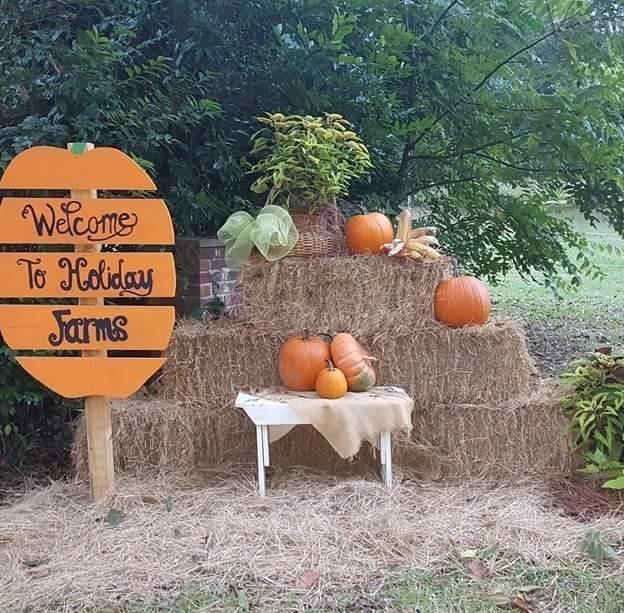 pumpkin patches Savannah Bluffton Hilton Head 2017 Hayrides maze