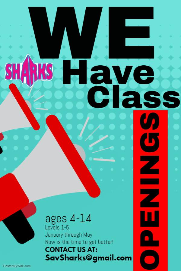 Savannah Sharks cheer classes gymnastics tumbling