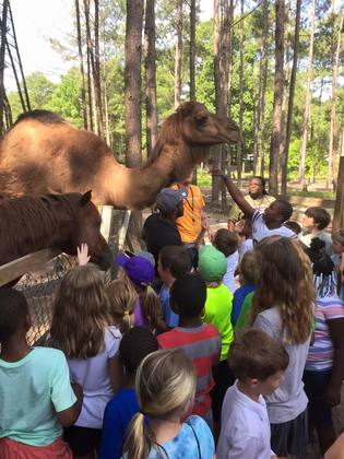 Savannah Summer Camps 2018 Byrd Adventure