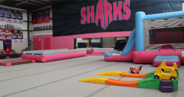 Savannah Sharks gym parent me playdates