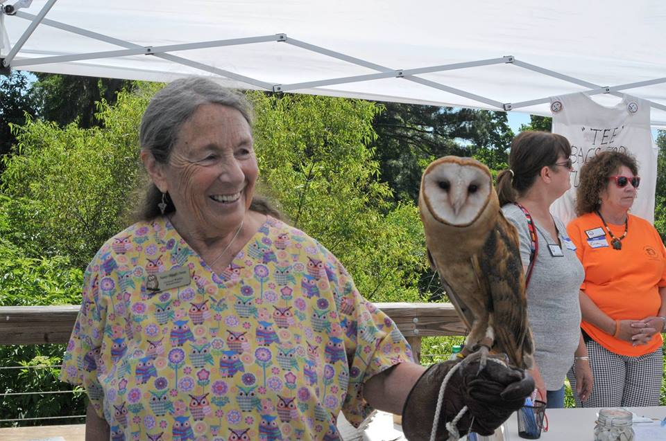 Owl nature program