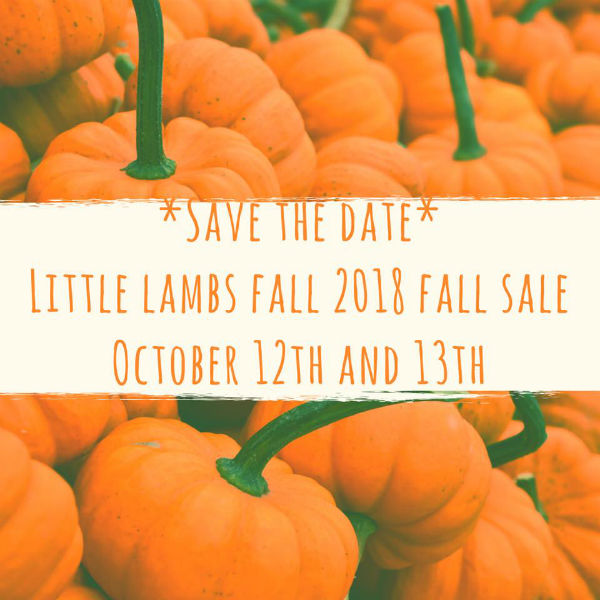 Little Lambs Savannah Consignment Sale 2018