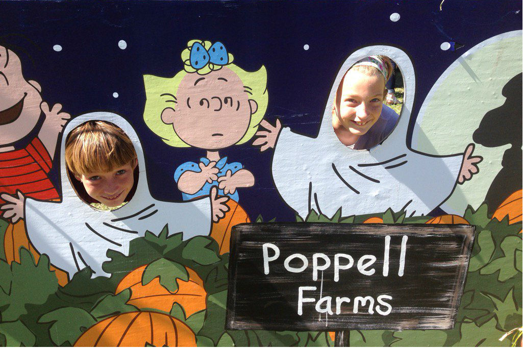 Savannah pumpkin patch farms hayrides corn maze