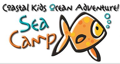Tybee Sea Camp Savannah summer camps