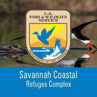 free kids events Savannah Wildlife Refuge