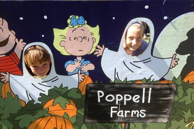 Poppell Farms pumpkin patch hayrides maze fall Savannah Chatham County 2019