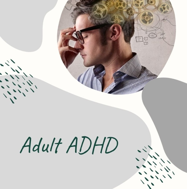 ADHD adult savannah education consultants