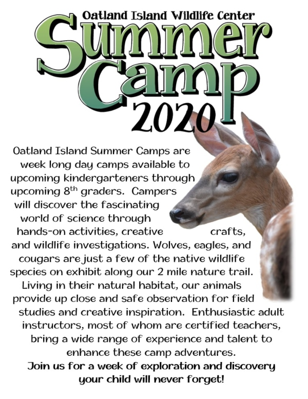 Summer Camp 2020 Savannah Oatland Island Wildlife Center