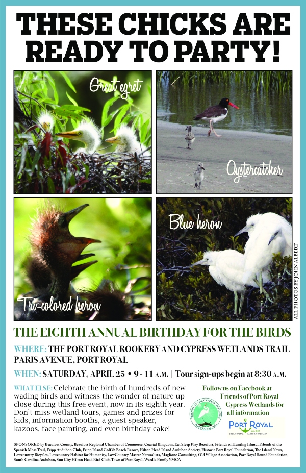 Birthday for the Birds Port Royal Beaufort 2020