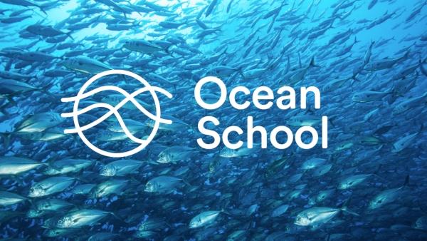Ocean School Savannah FREE online resource