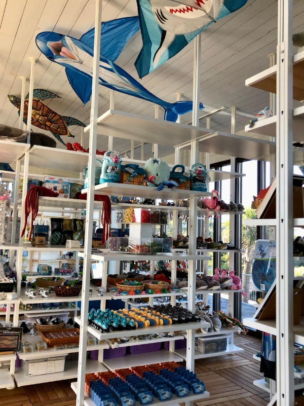 tybee marine science center gift shop