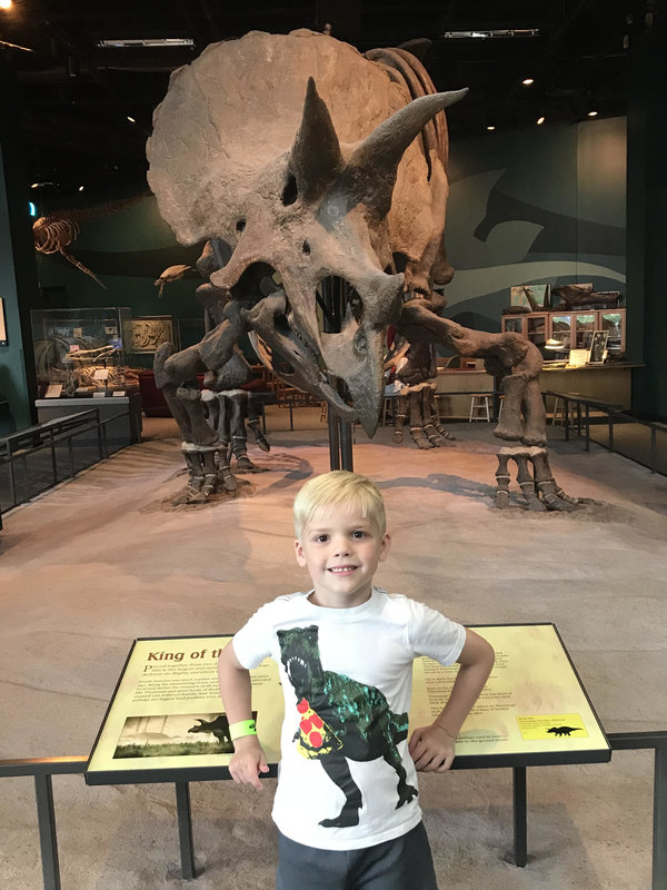 dinosaur exhibits museums near Savannah