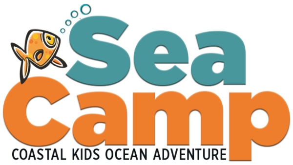 SEa Camp Tybee Island Summer Camps Marine Science Center