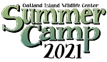 Savannah Summer Camps 2021 Outdoor Nature Oatland Island