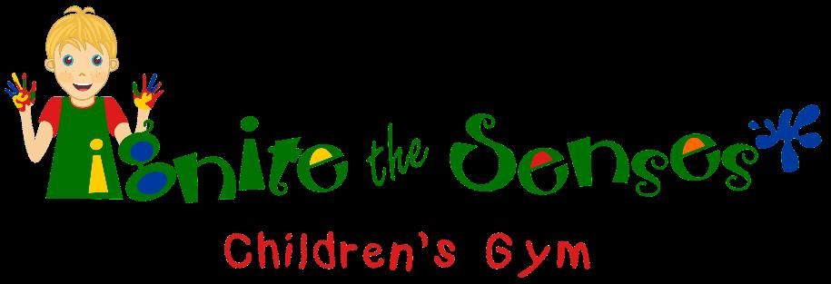 Ignite Senses Children's Gym Autism Bluffton Lowcountry Hilton Head