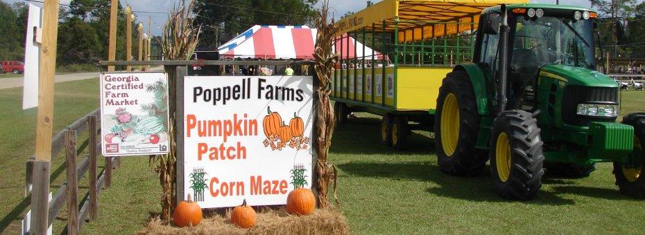 Poppell Farms pumpkin patch hayrides corn maze