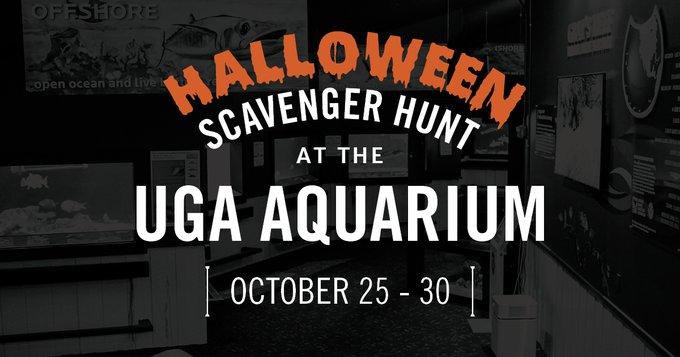 Savannah Halloween Scavenger Hunt UGA aquarium